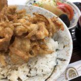 お食事処ライオン/南宮崎駅一階でランチ! 懐かしい雰囲気の定食屋で、美味しいかき揚げ丼と謎の味噌汁